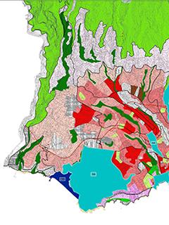 Ordenamento territorial e urbano da ilha da Madeira: relevância do Funchal neste processo